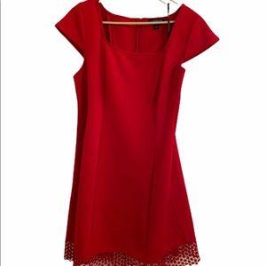 Lane Bryant Red Scuba Dress Size 14